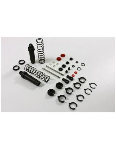 Set Amortizoare Complete Spate TeamC 2WD (2 buc)