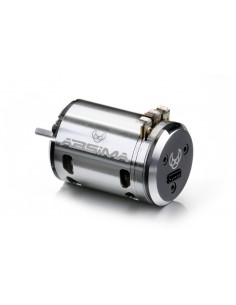 "Motor Brushless Sensored 1:10 ""Revenge CTM"" 13.5T Stock"