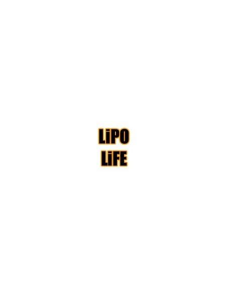Acumulatori LiPO/LiFE